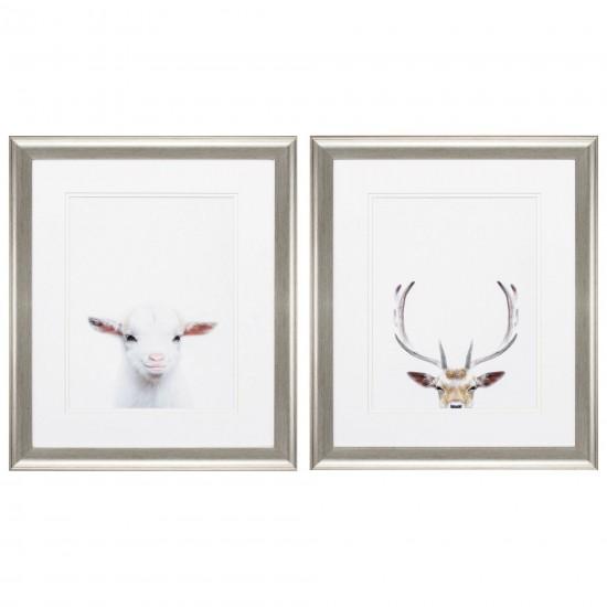Goat Deer S/2