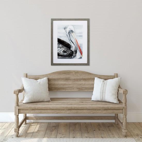 Grey Pelican I